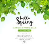 Spring Leaves Background Royalty Free Stock Images