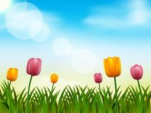Spring season background, nature illustration royalty free illustration