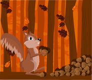 Illustration of a squirrel Stock Image