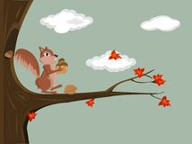 illustration of a squirrel Stock Photo