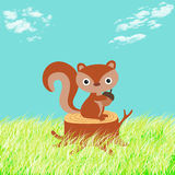 Illustration of a squirrel in the woods Royalty Free Stock Photography