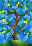 Stained glass illustration with an apple tree standing alone on a hill against the sky. Illustration in stained glass style with an apple tree standing alone on vector illustration