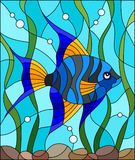 Stained glass illustration blue  fish scalar on the background of water and algae. Illustration in stained glass style blue  fish scalar on the background of Royalty Free Stock Photography