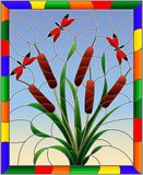 Stained glass illustration with bouquet of bulrush and red dragonflies on a sky background ,in bright frame. Illustration in stained glass style with bouquet of vector illustration