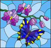 Stained glass illustration  with a branch of purple Orchid and bright butterfly on a blue background Stock Images
