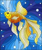 Stained glass illustration with bright gold fish on the background of water and air bubbles. Illustration in stained glass style with bright gold fish on the Stock Photos