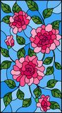 Stained glass illustration with flowers, buds and leaves of pink roses on a blue background. Illustration in stained glass style with flowers, buds and leaves of vector illustration