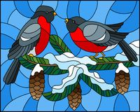 Stained glass illustration with a pair of birds bullfinches on snow-covered spruce branches with cones on a background of the sky. Illustration in stained glass Stock Photos