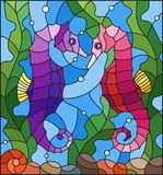Stained glass illustration with a pair of fish seahorse  on the background of water and algae. Illustration in stained glass style with a pair of fish seahorse Royalty Free Stock Photo