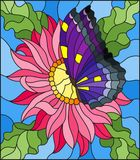 Stained glass illustration  with a pink Aster flower and bright butterfly  Royalty Free Stock Photography