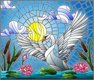Stained glass illustration with Swan , Lotus flowers and reeds on a pond in the sun, sky and clouds Stock Images