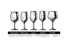 Illustration of Stemware types Stock Photo