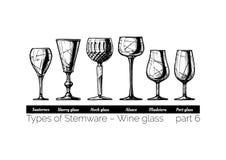 Illustration of Stemware types Stock Images