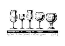 Illustration of Stemware types Royalty Free Stock Image