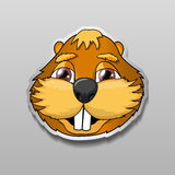 Illustration of sticker with a view of happy beaver. Stock Images