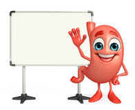 Illustration of stomach with display board Royalty Free Stock Image