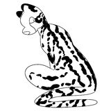 Illustration of a striped big cat Stock Photo