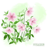 Illustration with stylized flowers Stock Photography