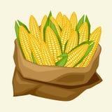 Illustration of stylized sack with fresh ripe corn Royalty Free Stock Images