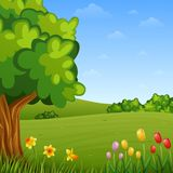 Summer landscape with flowers and trees Stock Illustration