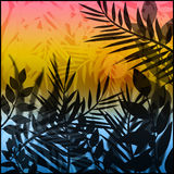 Illustration with summer sunset and tropical leaves Stock Image