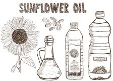 Sunflower oils doodle Royalty Free Stock Images