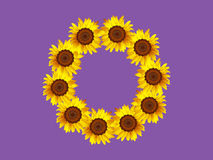 Sunflower wreath Royalty Free Stock Photography