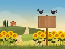Sunflowers field in the countryside. Illustration of sunflowers field in the countryside Royalty Free Stock Photography