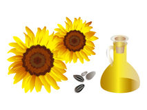 Sunflowers and nature products Stock Photo