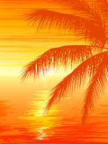 Illustration of sunset in ocean with palm tree. Stock Photography