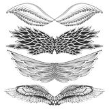 Tattoo art design of different gothic wing. Illustration of Tattoo art design of different gothic wing Stock Photography