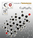 Illustration of Testosterone Molecule  grey background Royalty Free Stock Images