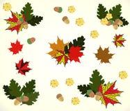 Illustration on the theme of autumn, leaves, oak, maple, and acorns. Beige tone vector illustration