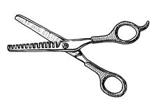 Illustration of Thinning shears. Vector hand drawn illustration of  thinning shears in vintage engraved style. isolated on white background. Black and white Stock Photography