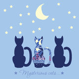 Illustration with three cats. Caption mysterious cat. Cats who a Stock Photography