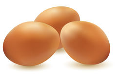 Illustration of three eggs - vector Royalty Free Stock Photos