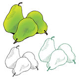Illustration of three juicy pears Royalty Free Stock Image