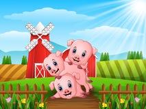 Three little pigs playing at farm. Illustration of Three little pigs playing at farm Stock Photo