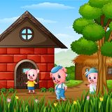 Three little pigs are playing outside house. Illustration of Three little pigs are playing outside house Royalty Free Stock Photography