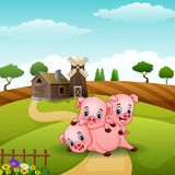 Three little pigs playing together. Illustration of Three little pigs playing together Stock Images