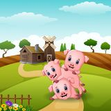 Three little pigs playing together. Illustration of Three little pigs playing together Stock Image