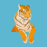 Illustration of Tiger on blue background. Royalty Free Stock Photography