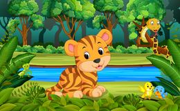 Tiger in the forest. Illustration of Tiger in the forest vector illustration