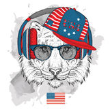 Illustration of tiger in the glasses, headphones and in hip-hop hat with print of USA Royalty Free Stock Photos