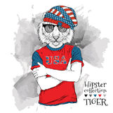Illustration of tiger hipster dressed up in the glasses and in the t-shirt with print of USA flag. Vector illustration. Royalty Free Stock Photography