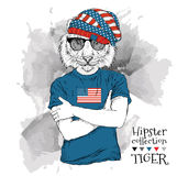 Illustration of tiger hipster dressed up in the glasses and in the t-shirt with print of USA flag. Vector illustration. royalty free illustration