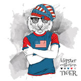 Illustration of tiger hipster dressed up in the glasses and in the t-shirt with print of USA flag. Vector illustration. Stock Photography