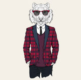 Illustration of tiger hipster dressed up in jacket, pants and sweater. Vector illustration Stock Images