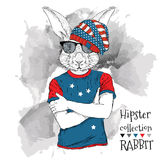 Illustration of tiger rabbit  dressed up in the glasses and in the t-shirt with print of USA flag. Vector illustration. Royalty Free Stock Image
