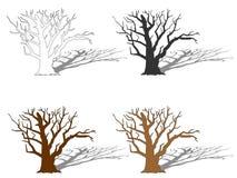 Illustration tirée par la main d'actions de vecteur de l'arbre quatre illustration stock